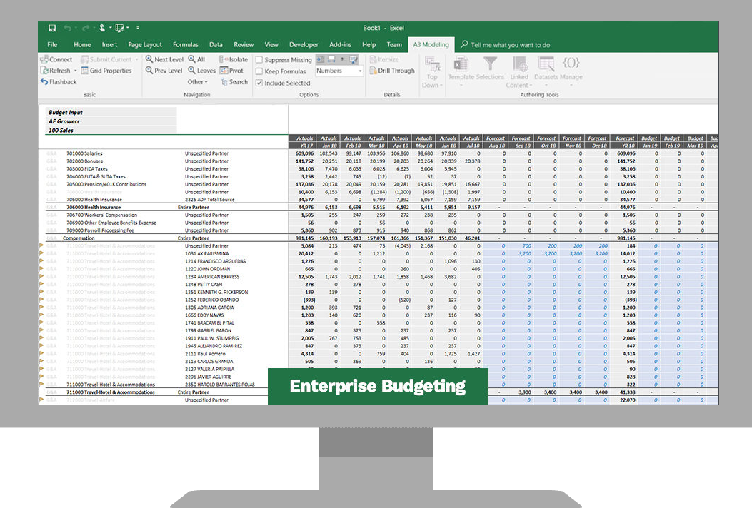 Enterprise Budgeting Software Screenshot